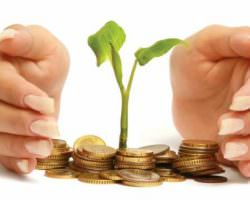 Immagine Cosa Sono i Fondi Pensione?