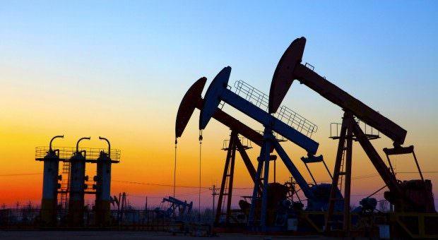 Immagine Perchè Investire nel Petrolio