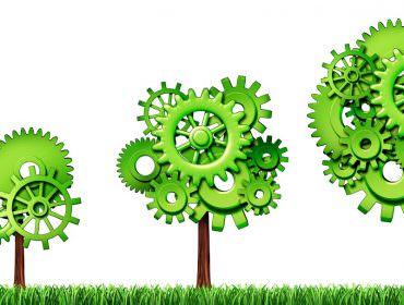 Investire nella Green Economy
