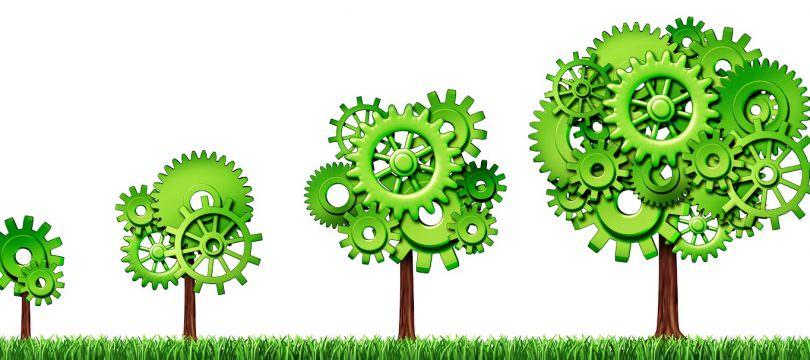 Immagine Conviene Investire nella Green Economy?