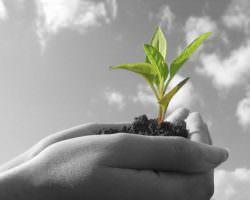 Immagine Diventare Trader Professionista: i 3 Passaggi Fondamentali