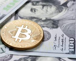Immagine Bitcoin, Bitcoin Cash, Bitcoin Gold: Prospettive