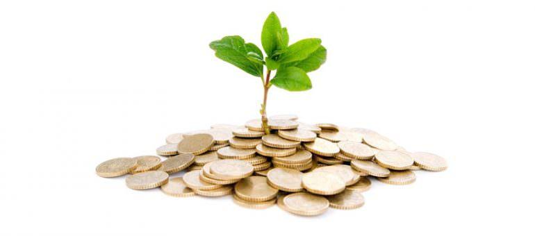 Fondi etici: cosa sono e come investono