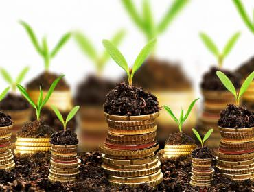 Immagine Investimenti: Ecco i Più Popolari (Pro e Contro)