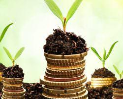 Immagine Investimenti: 5 Consigli per i Giovani Lavoratori