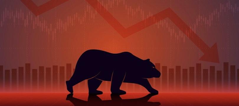 Immagine Bear Market: Cos'è e Come Affrontarlo
