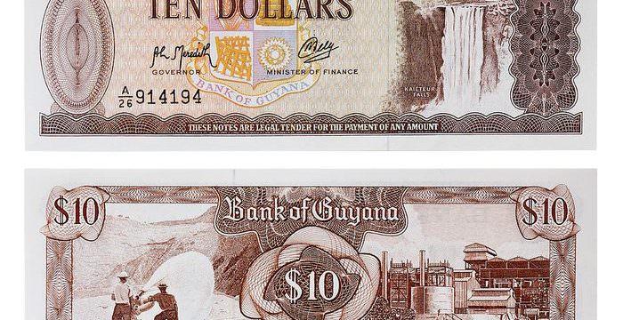 Immagine I Rischi del Trading con le Valute Esotiche