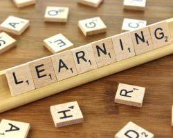 Immagine Imparare il Trading: le Risorse Gratuite Sono Veramente Utili?
